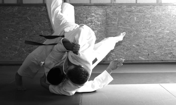 Falls Road Aikido - Towson: 8 or 16 Aikido Classes at Falls Road Aikido (Up to 51% Off)