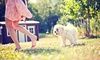 LesleyAnn Photography - Fort Langley: Beginner or Advanced Photo Workshop and Walkabout from LesleyAnn Photography in Fort Langley (Up to 82% Off)