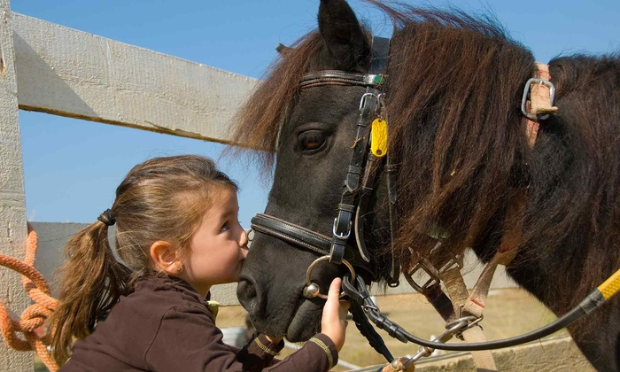 The Good Earth Farm and Foundation - Loxahatchee Groves: Two-Week Pony Lease for One Child or Animal Therapy at The Good Earth Farm and Foundation (Up to 47% Value)