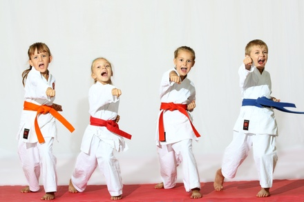 $78 for $224 Groupon — Wyomissing ATA Martial Arts