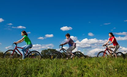$39 for $79 Worth of Bike <strong>Services</strong> at Brookdale Cycle