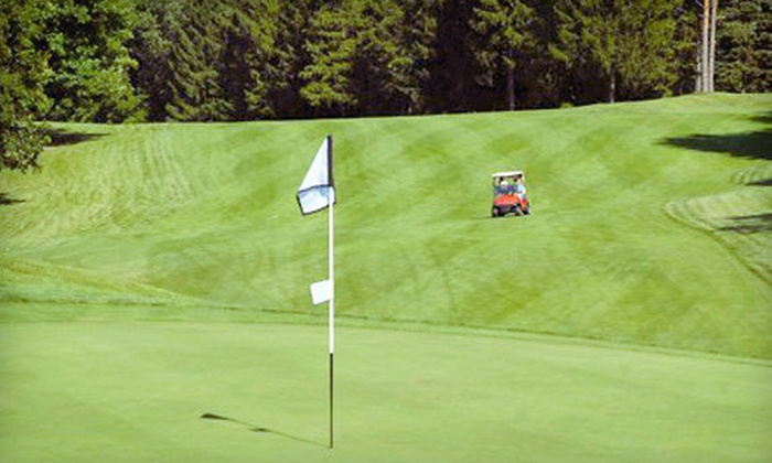 Timber Ridge Golf Club - Bath: 1, 3, or 15 Private Golf Lessons from the Golf Instruction Staff at Timber Ridge Golf Club (Up to 56% Off)