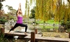 Yoga @ Cindy's, Inc. - Multiple Locations: One Month of Unlimited Yoga Classes or 15 Drop-In Classes at Yoga at Cindy's (Up to 69% Off)