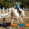 Up to 58% Off Horse-Riding Lessons in Bonita