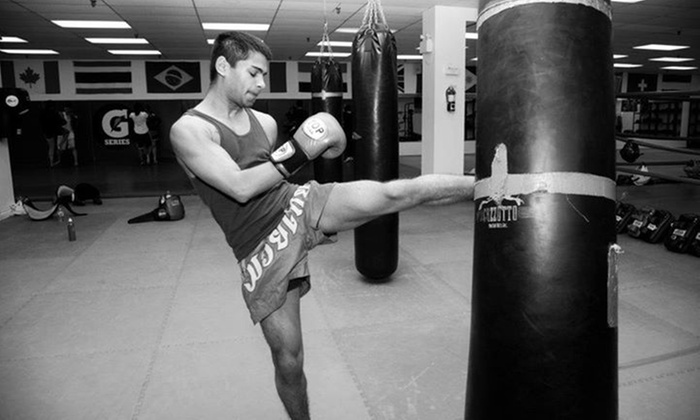 Toronto Kickboxing & Muay Thai Academy - Multiple Locations: C$25 for Five Adult or Children's Classes at Toronto Kickboxing & Muay Thai (TKMT) Academy (C$100 Value)