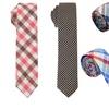Skinny Ties from Skinny Tie Madness (2-Pack)