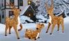 Pre-Lit Reindeer Assortment: Pre-Lit Reindeer Assortment