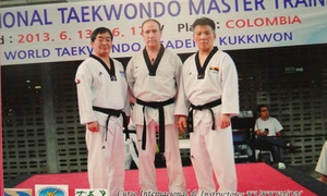 Tae Kwon Do Club America: $30 for $80 Worth of Martial-Arts Lessons — Tae Kwon Do Club America