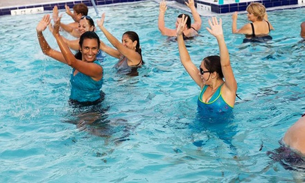 6 or 12 Aqua Zumba® Classes at Fort Myers Zumba® Fitness (50% Off)