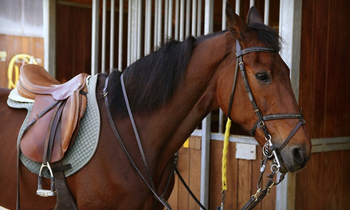 Juro Stables - Mount Juliet: One-Hour Group Guided Horseback Trail Ride for Two, Four, or Six at Juro Stables (Half Off)