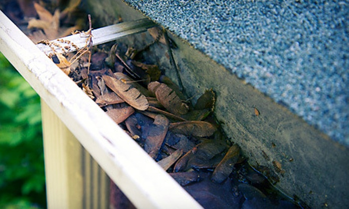 HomeSolutions NJ LLC - Denville: Gutter Cleaning for 100 or 150 Feet from HomeSolutions NJ LLC (Up to 61% Off)