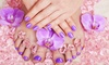 Up to 58% Off Shellac Mani-Pedis at Intrend Chic Salon
