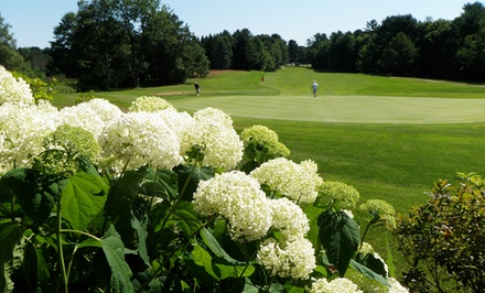 18-Hole Round of Golf with Range Balls for Two or Four at Brunswick Golf Club (Up to 64% Off)