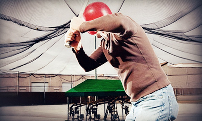 Frozen Ropes - East Garden City: One or Two 60-Minute Batting Cage Rentals at Frozen Ropes (Up to 59% Off)