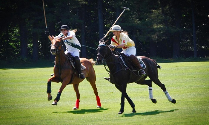 stage hill polo - Wellington: Two or Four Group Polo Lessons at Stage Hill Polo (Up to 86% Off)