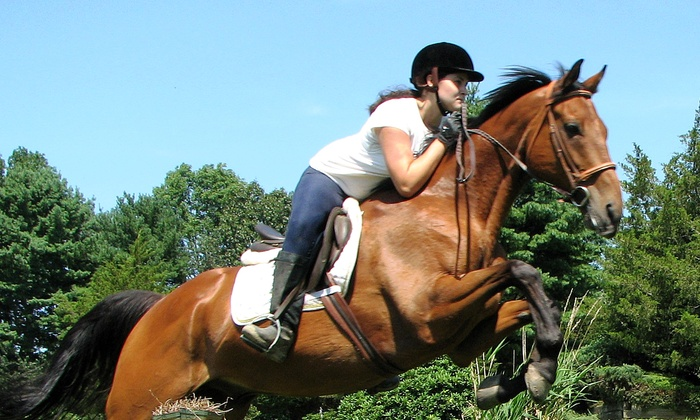 Hunter's Haven Farm - Groveland: Two or Four Small-Group Riding Lessons or Week of Riding Summer Camp at Hunter's Haven Farm (Up to 51% Off)