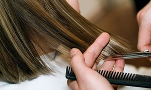 Exquisite Design Salon and Spa: Haircut with Optional Highlights or Single- or Double-Process Color at Exquisite Design Salon and Spa (Up to 53% Off)