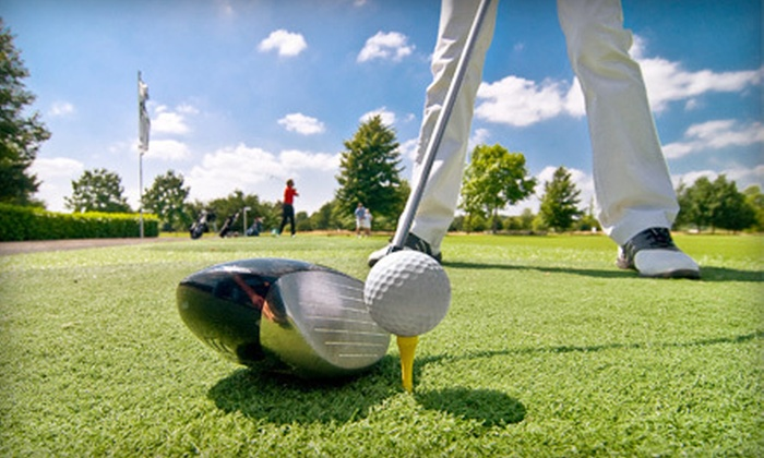 PGA Professional David Suh at Fremont Park Golf Club - Central Downtown: One or Two Hours of Private Golf Lessons from PGA Professional David Suh at Fremont Park Golf Club (Up to 59% Off)