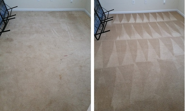 how to clean car carpet with mold