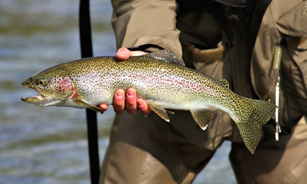 Trout Fishing Including Rod Rental and Fish for Two, Four, or Six People at Burd's Family Fishing (Up to 51% Off)