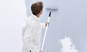 Gruppo Colori: Imbiancatura fino a 150 m² calpestabili e una, 2, 3 o 4 pareti colorate da Gruppo Colori (sconto fino a 88%)