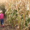 Up to 39% Off Corn Maze at Stewart Farms