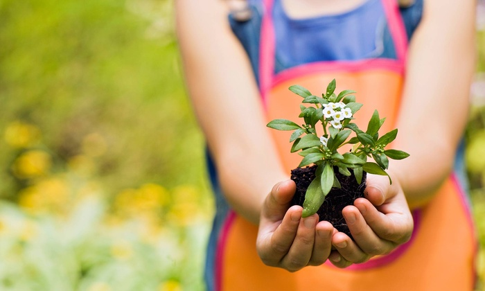 New Earth Garden Center - East Louisville: $15 for $30 Worth of Heirloom Seeds, Organic Fertilizer, Supplies and More at New Earth Garden Center