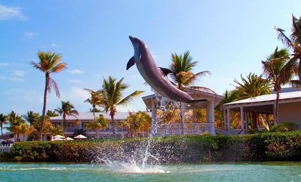 Hawks Cay Resort Groupon