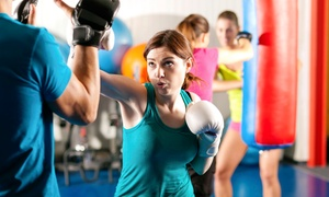 Sidekicks Martial Arts Studio, Inc.: One or Two Months of Unlimited Kickboxing and MMA Classes at Sidekicks Martial Arts Studio, Inc. (Up to 51% Off)