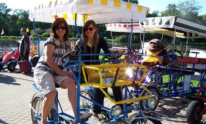 image for Paddleboat, Pedal-Cart, Kayak, and Bike Rentals from High Roller Fun Rentals (Up to 40% Off)