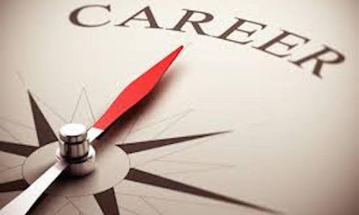 Image result for career consultant