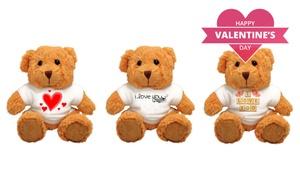 Valentine's Day Personalised Cuddly Teddy