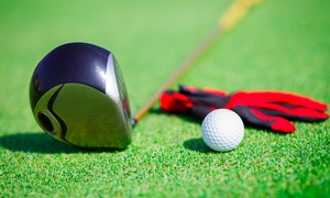 Affordable Golf: Affordable Golf: Individual Indoor PGA Lessons from £9 (Up to 70% Off)