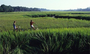 Skidaway Island State Park: Two-Hour Bike Rental for One, Two, or Four at Skidaway Island State Park (Up to 50% Off)