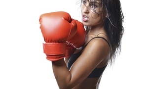 Lifefit Kickboxing: 5 or 10 Kickboxing Classes and Boxing Gloves at Lifefit Kickboxing (Up to 76% Off)