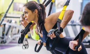 Crossbox Training Center: 5, 10, or 20 TRX Fusion Suspension Sessions at Crosstrain Sports Club (Up to 67% Off)