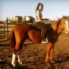 Up to 56% Off Horseback Excursions in Rockwall