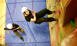 chessington rocks: One-Hour Introductory Climbing Session for £7.50 with Chessington Rocks (50% off)