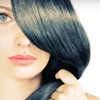 Up to 68% Off Cut and Color Services
