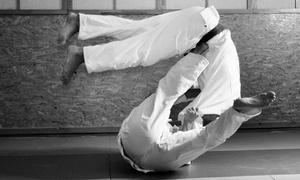 Laureano Martial Arts: 5, 10, or 1 Month of Karate, Ju Jitsu, or Kickboxing Classes at Laureano Martial Arts (Up to 81% Off)
