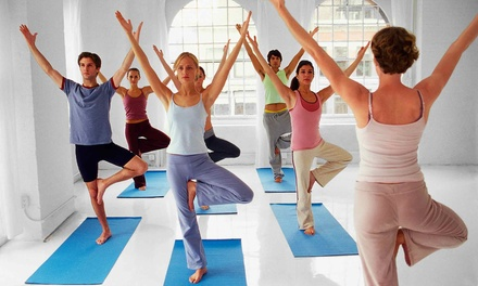 One or Two Months of Unlimited Yoga Classes at Yogaholic (Up to 80% Off)