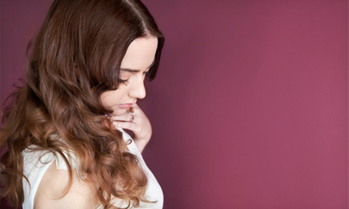 Shawn's Hair Creations - Arlington Heights: Women's Haircut with Wash and Style, Highlights or Keratin Treatment, or Color at Shawn's Hair Creations (Up to 59% Off)