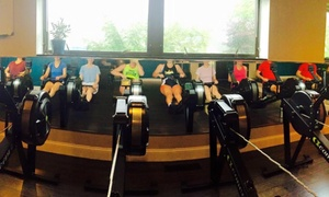 Terra Firma Rowing: $15 for $60 Worth of Fitness Classes — Terra Firma Rowing