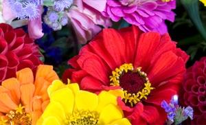 Roll 'n' Grow Flower Mat review