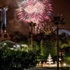 Anaheim Hotel a Short Walk from Theme Parks