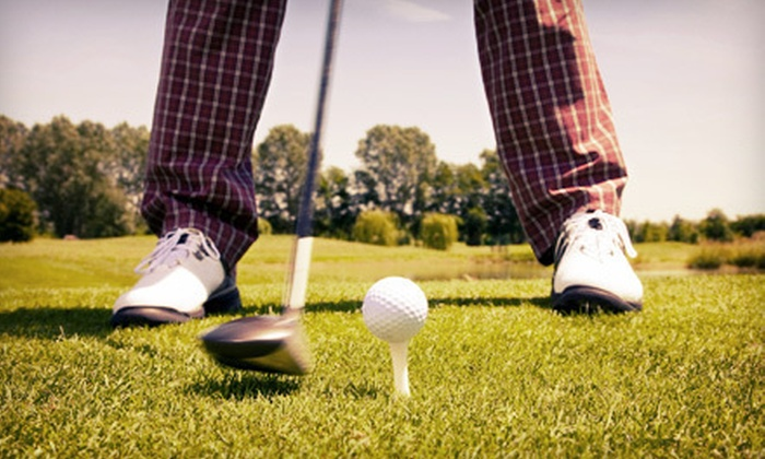 GolfRite Performance Center - Southborough: One or Two 90-Minute Group Lessons with PGA Pro Skip Guss at GolfRite Performance Center in Southborough (Up to 58% Off)