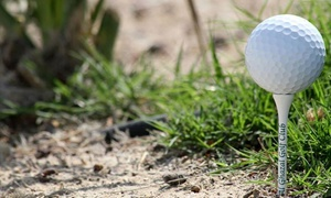 Al Ghazal Golf Club: 9 or 18 Holes of Golf with Buggy and Mat Rental at Al Ghazal Golf Club
