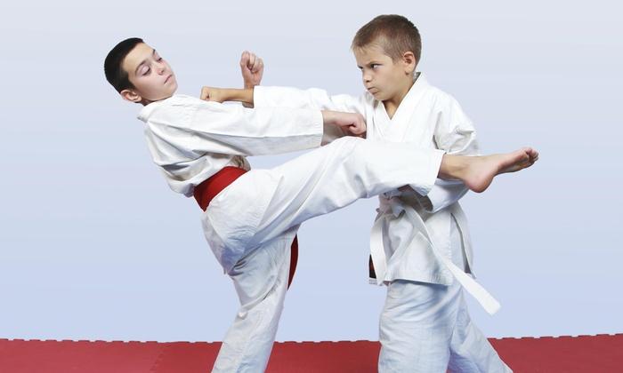 Gomez Martial Arts Center - Brighton Park: $88 for $250 Worth of Martial-Arts Lessons — Gomez Martial Arts Training Center