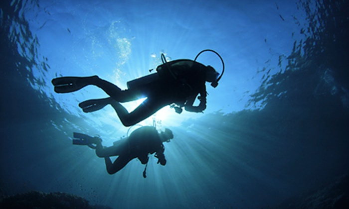 Planet Scuba - Planet Scuba Inc.: Scuba-Certification Course with Option for Diving Trip, or a Try Scuba Class for Two from Planet Scuba (51% Off)