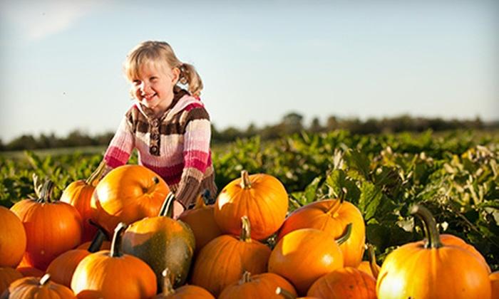 Warbington Farms - Chestatee: Fall Farm Fun Passes for Two or Four at Warbington Farms (Up to Half Off)